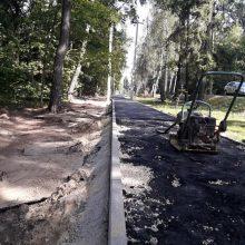 ukladka-asfaltovoy-kroshki-v-istre